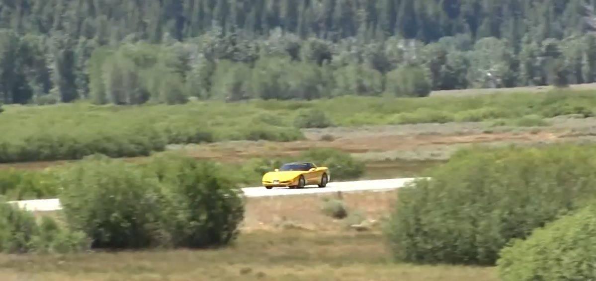 corvette grangma