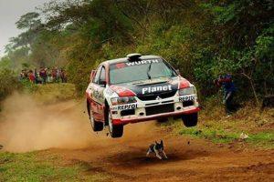 Mitsubishi-Lancer-Dog-Jump